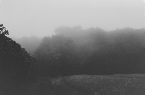 A hazy morning I