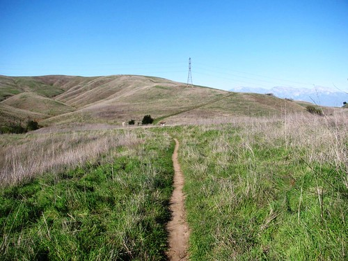 San Juan Hill - Telegraph - Easy Street Loop Hike