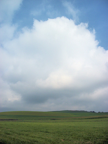 pasture cloud