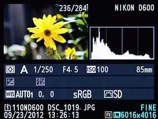 Nikon D600 playback histogram how to use learn manual guide tutorial book