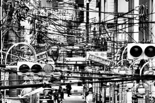 Wire Jungle