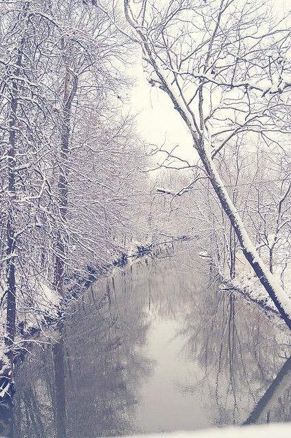 Creek (Fade)