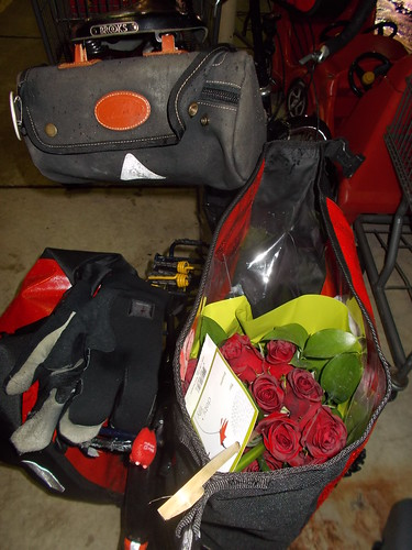 Roses in My Pannier
