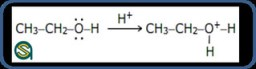 Class 12 Chemistry Notes   Chemical Reactions of Alcohols