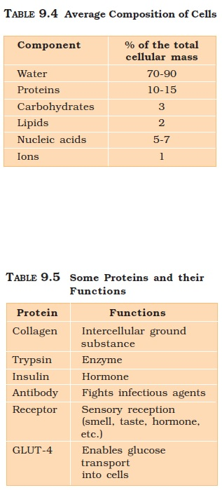 NCERT Class XI Biology: Chapter 9   BioMolecules