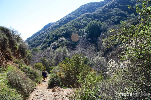 Temescal Canyon to Skull Rock 15