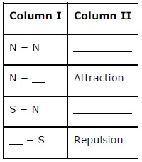 NCERT Solutions for Class 6th Science: Chapter 13   Fun with Magnets