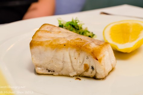 Icebergs - yellow fin tuna