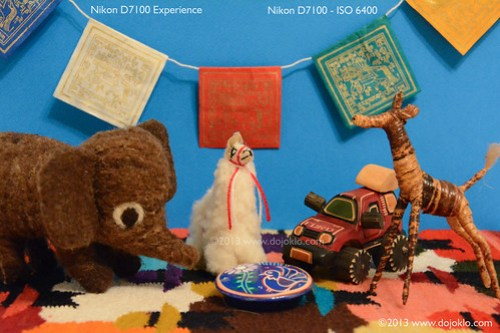Nikon D7100 high ISO digital noise test review preview sample image photo NR noise reduction