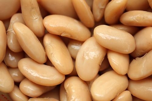 haricots tarbais - white bean dip