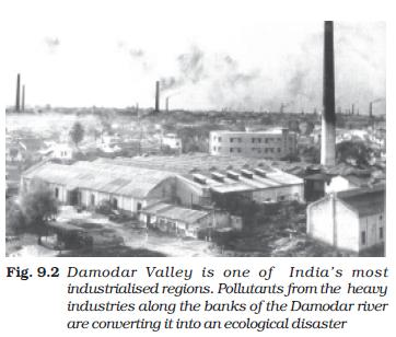 NCERT Class XI Economics: Chapter 9 – Environment and Sustainable Development Image by AglaSem