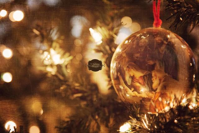 {Day 8} 25 Days of Christmas por Tammy Wilson