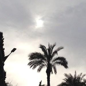 Hoy está remolón el sol y no termina de salir tras la lluvia