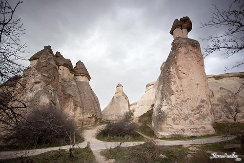 Paşabağ (Turquía)