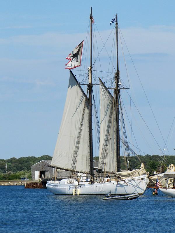 Black Dog Tall Ship