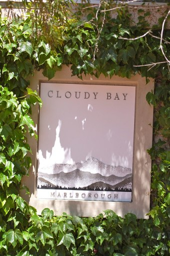 Cloudy Bay Winery 8