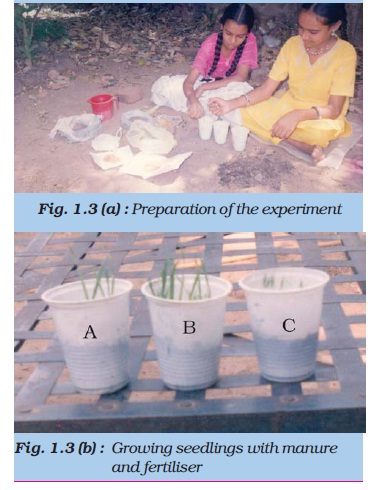 NCERT Class VIII Science Chapter 1 Crop Production and Management Image by AglaSem