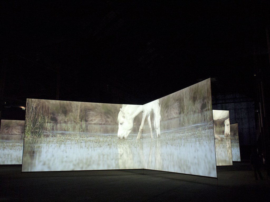"""DOUG AITKEN'S """"ALTERED EARTH"""" INSTALLATION OPENING WITH PERFORMANCE BY TERRY RILEY at the Parc des Ateliers, Arles  Photo Annabel Fernandes"""