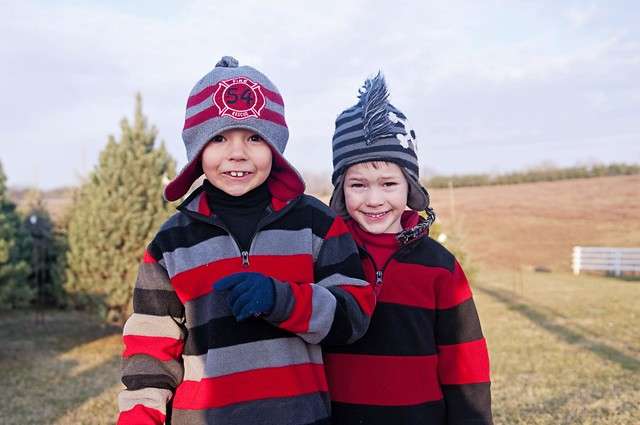 Boys at the Tree Farm