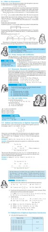 NCERT Class VIII Maths Chapter 9 Algebraic Expressions and Identities Image by AglaSem
