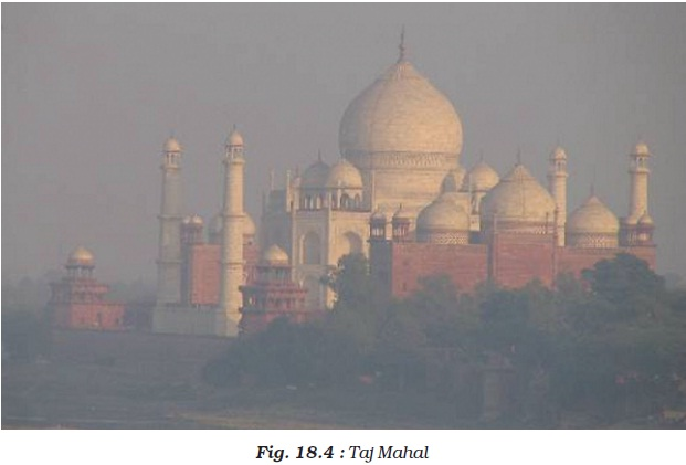 NCERT Class VIII Science Chapter 18 Pollution of Air and Water Image by AglaSem