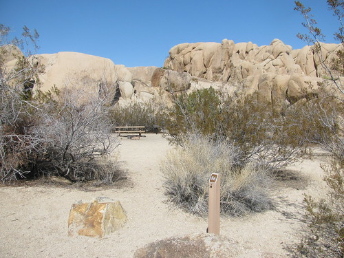 Skull Rock - Jumbo Rocks Loop (Joshua Tree)