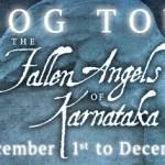 Author Hans Hirschi Book Excerpt 'The Fallen Angels of Karnataka'