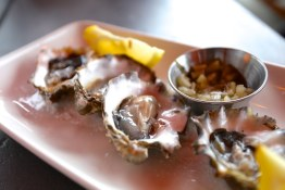 Freshly shucked beach oysters at Shelter