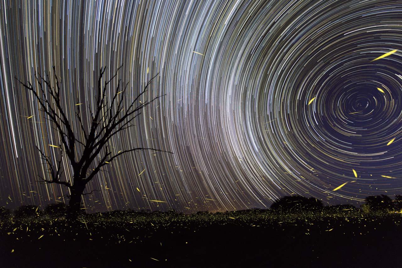 El star trail es un tipo de fotografía que utiliza tomas de larga exposición apuntadas hacia el norte o el sur que capturan el paso de las estrellas en el firmamento a medida que la tierra va girando.