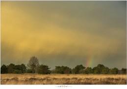 Een regenboog - een stukje ervan