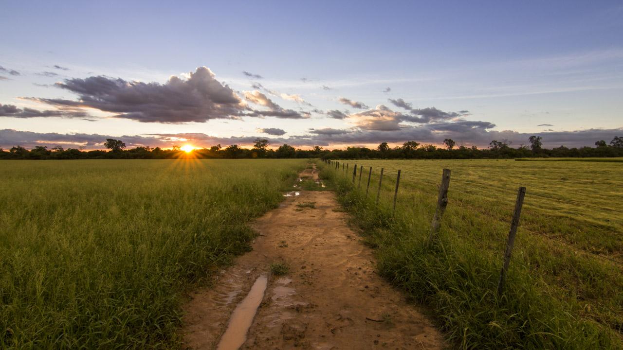 El territorio chaqueño siempre ofrece paisajes únicos, sobre todo en sus amaneceres y atardeceres.