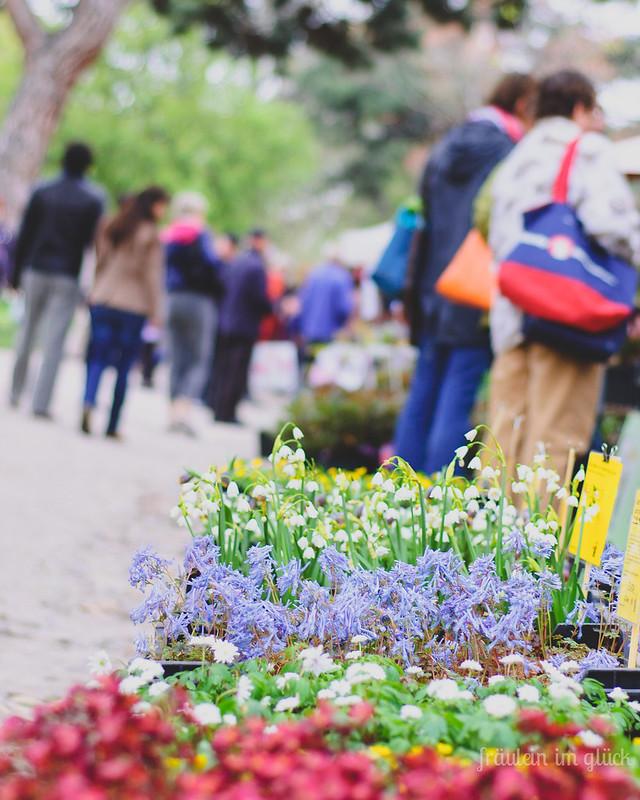botanischergarten (1 von 1)