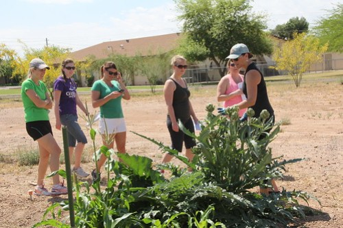Junior League of Phoenix gardening day