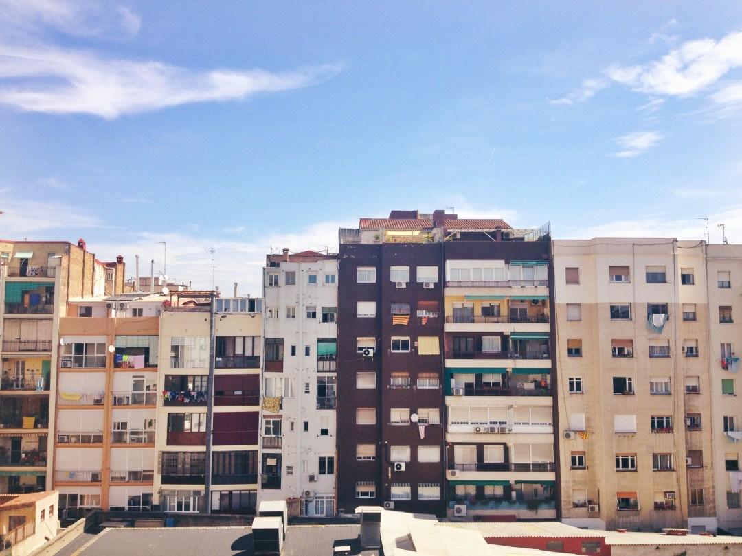 photo 4 (4)