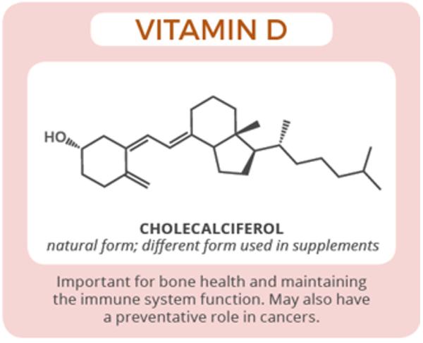 A Vitamina D e sua Grande Importância