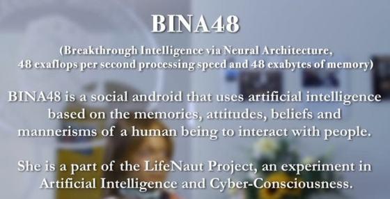 bina2