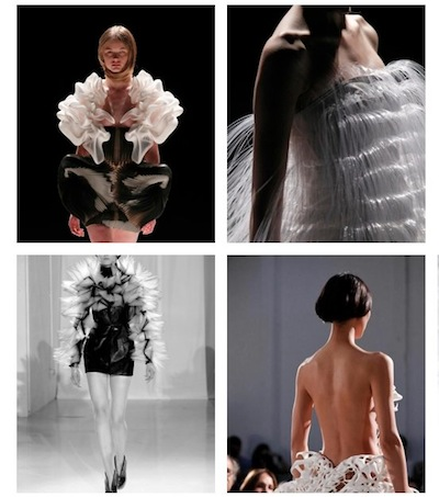 IRIS van HERPEN 2011 couture on FashionDailyMag loves brigitte segura