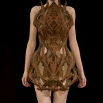 Iris Van Herpen Summer 2012 Haute Couture Paris