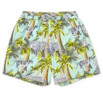 VILEBREQUIN tropical mens swim shorts