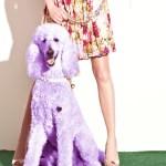 BETSEY JOHNSON SPRING 2013 DRESSES 1 FASHIONDAILYMAG