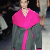 ALTUZARRA fall 2014 highlights NYFW