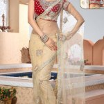 Indian Stylish saree dress for girls (8)