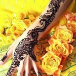 Easy and stylish Mehndi Designs 2013 (2)