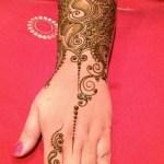 Pakistani Mehndi Designs 2013 (2)