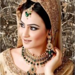 Bridal Jewellery Designs For Women In Pakistan (16)
