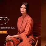Elegance Winter Collection 2013-14 For Girls (4)