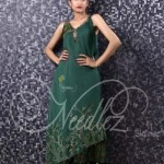Needlez by Shalimar Winter Collection 2013-14 For Women (8)
