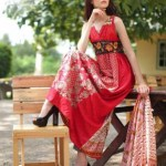 Rabea Designer Embroidered Linen Winter Collection 2013-14 For Women (9)