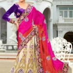 Ethnic Elegance Party Wear Dresses 2013-14 by Natasha Couture (1)