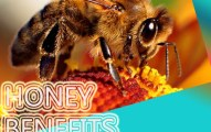 Honey benefits for health